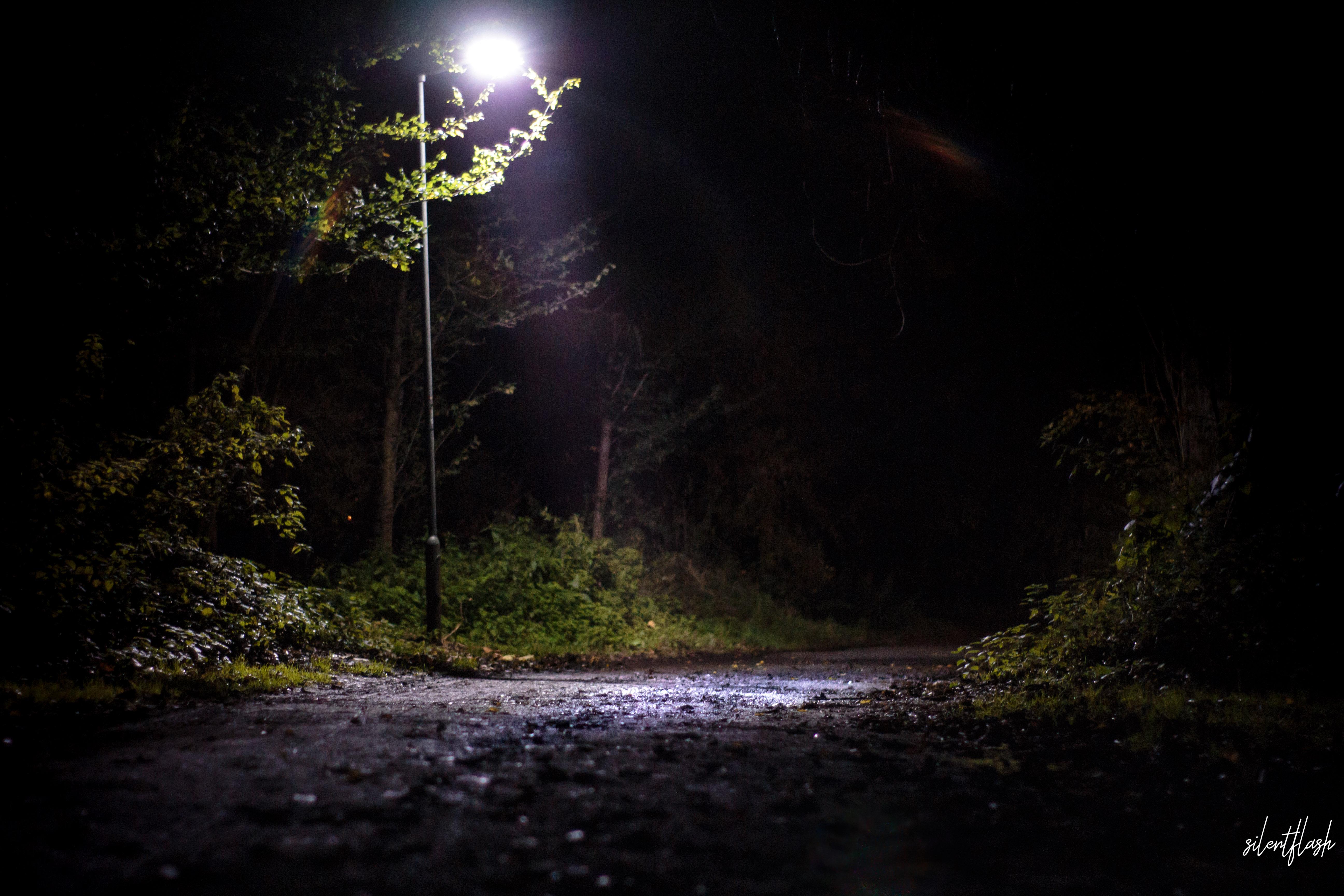 Die Nacht beginnt